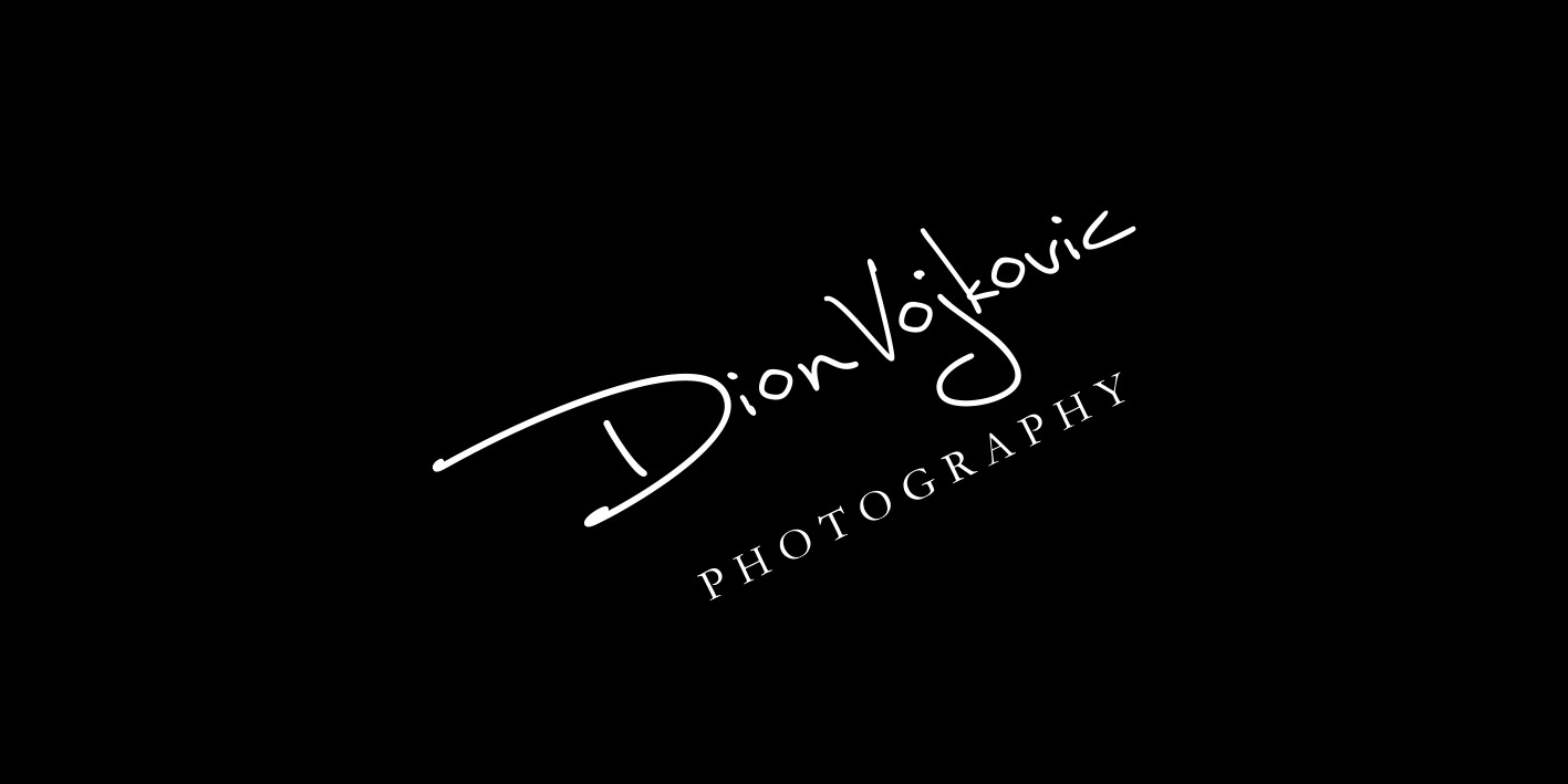 logo-design-dion