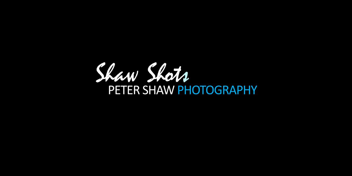 logo-design-shaw-shot